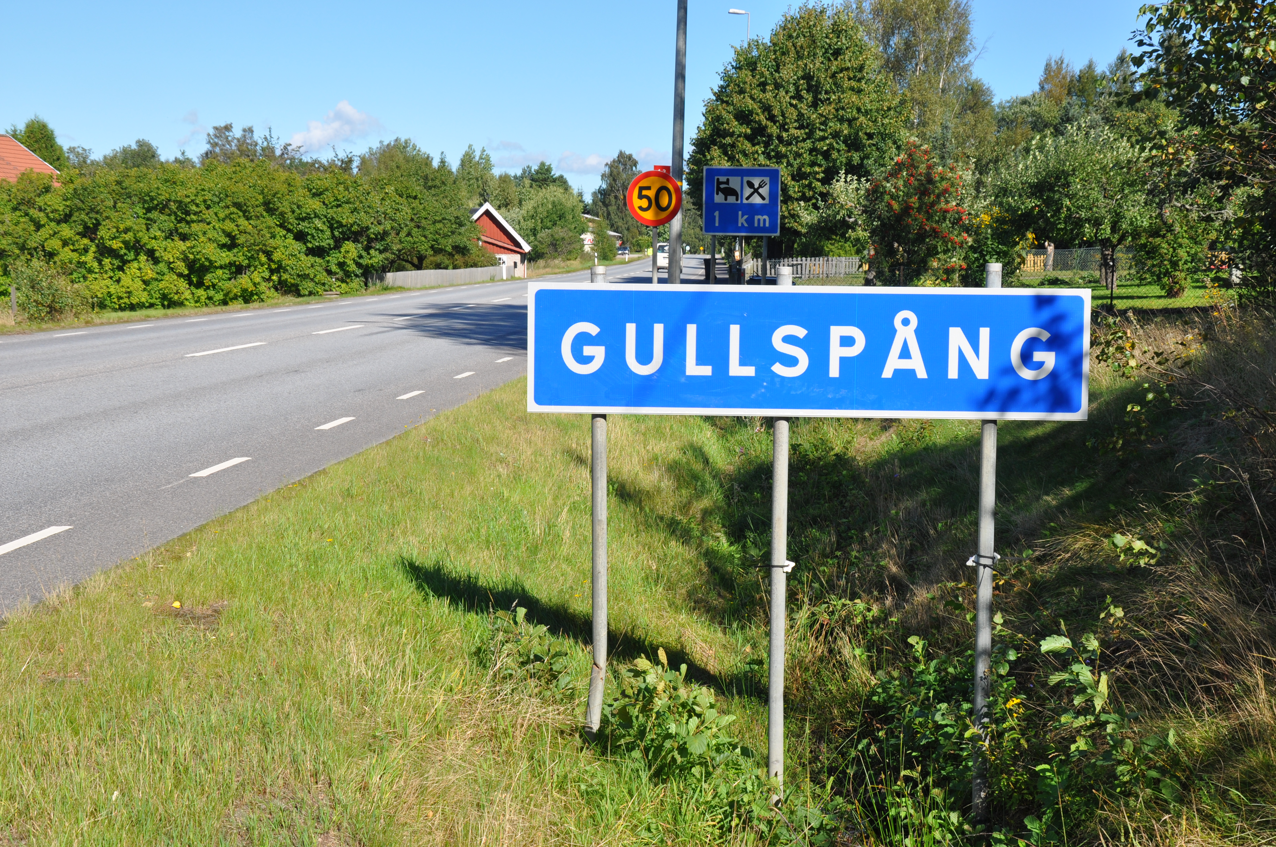 LDREOMSORGSPLAN - Gullspngs kommun